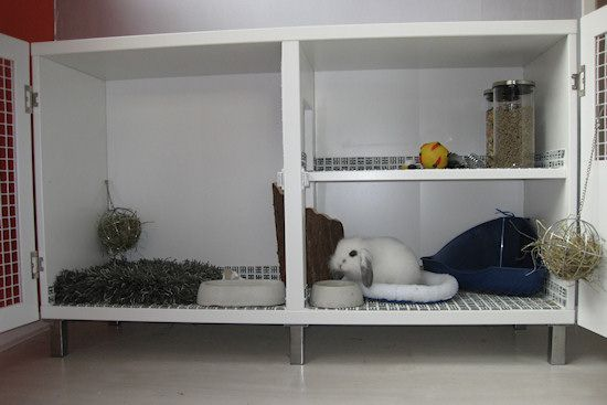 How To Build An Indoor Rabbit Hutch
