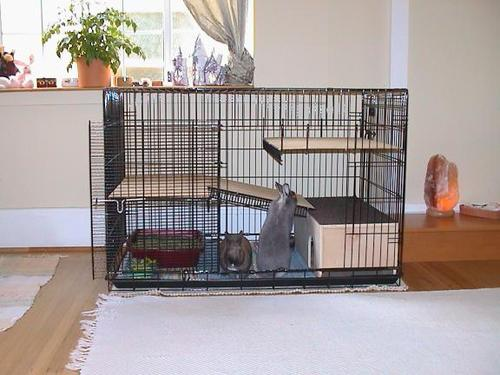 How to build make an indoor rabbit hutch or bunny cage - How to make a rabbit cage ...