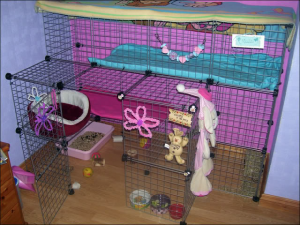 Homemade Indoor Rabbit Cage Ideas