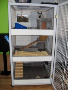 Homemade Indoor Rabbit Hutch