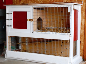 Two Story Indoor Rabbit Cage