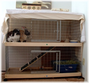 Two Story Indoor Rabbit Cage1