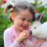 What Does it Mean When a Rabbit Licks you?